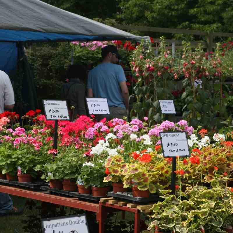Growing Events UK Garden Shows Festivals and Events Diary